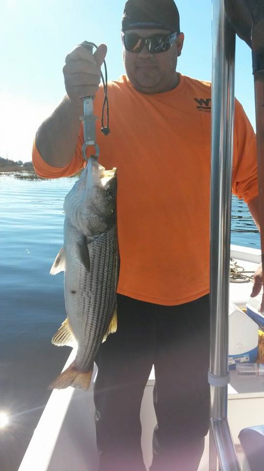 Cape Fear River Charters