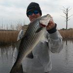 Cape Fear River Charters