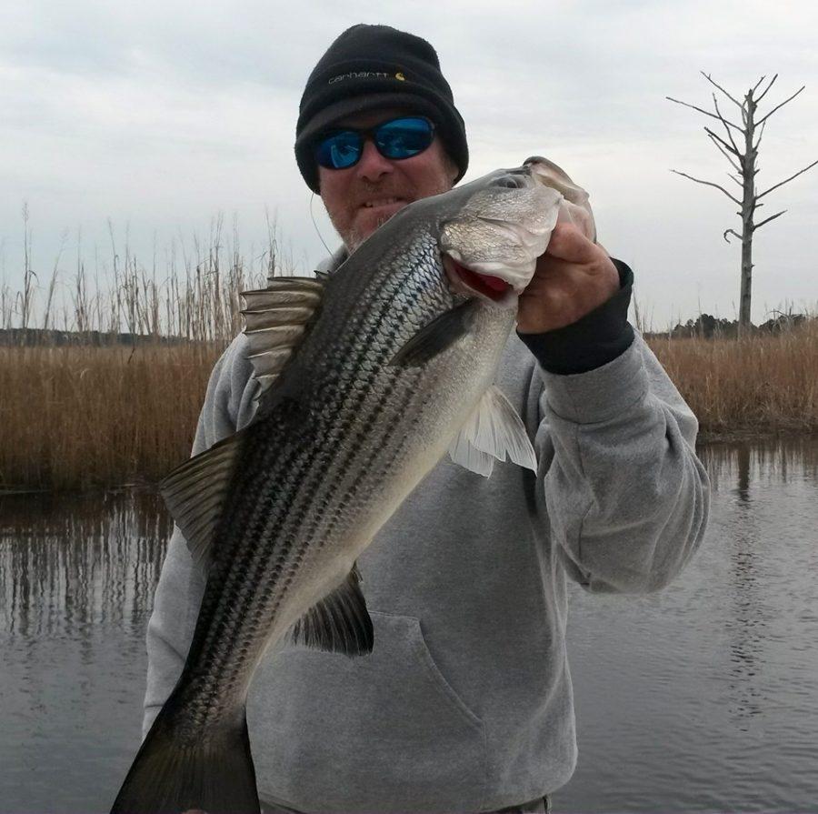 Striper Fishing On The Cape Fear River
