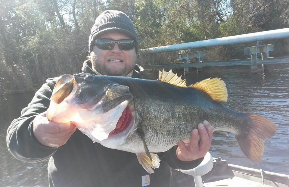 Bass Fishing Wilmington NC