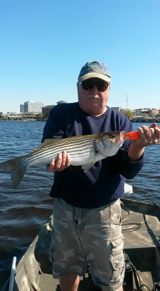 Striper Fishing on The Cape Fear River