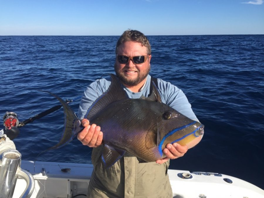 Fishing For Grouper and Trigger Fish