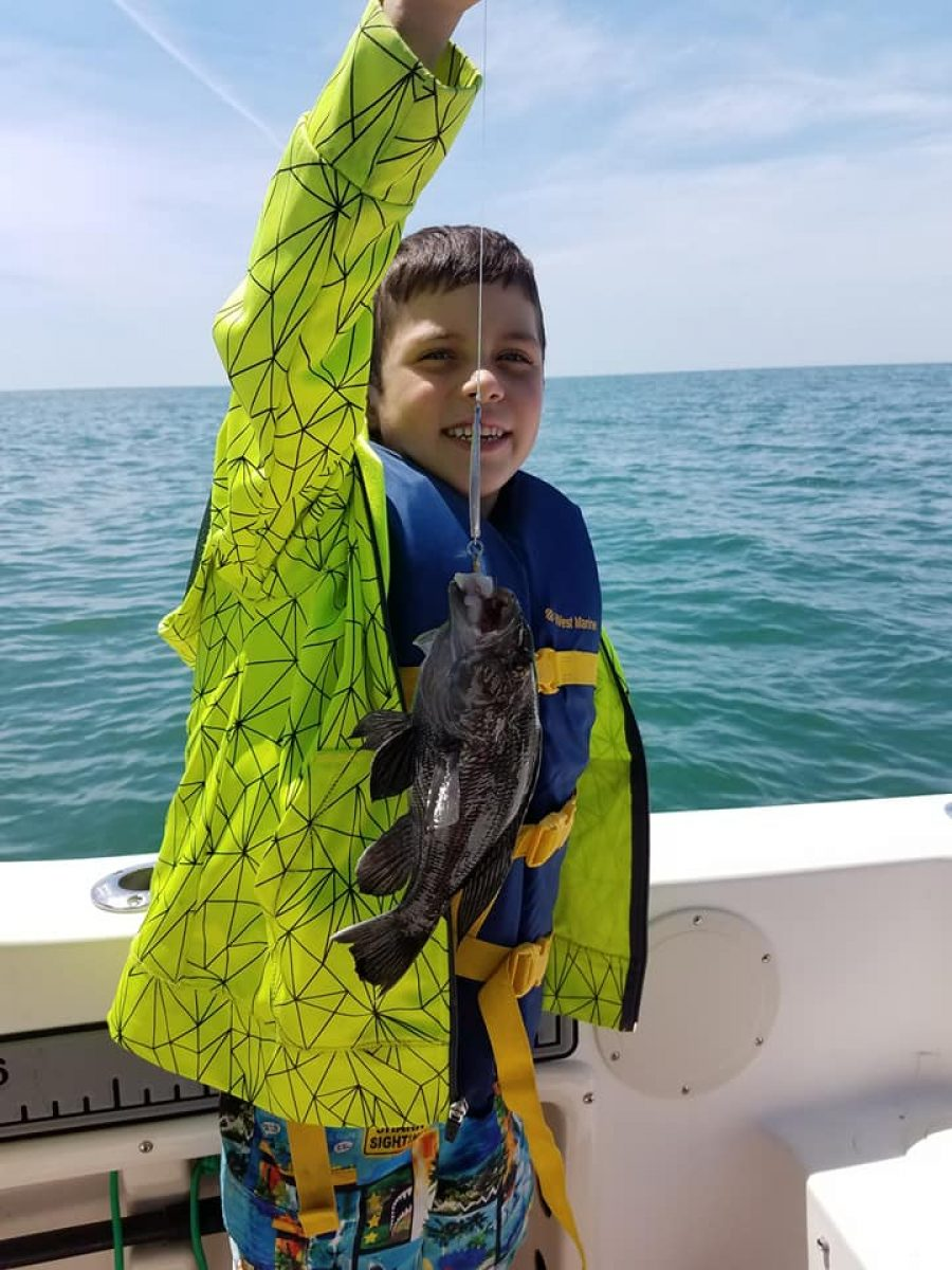 Bluefish And Bottom Critters